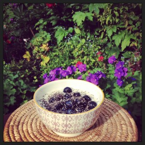blueberry-garden-porridge